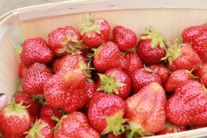 strawberrypick 016