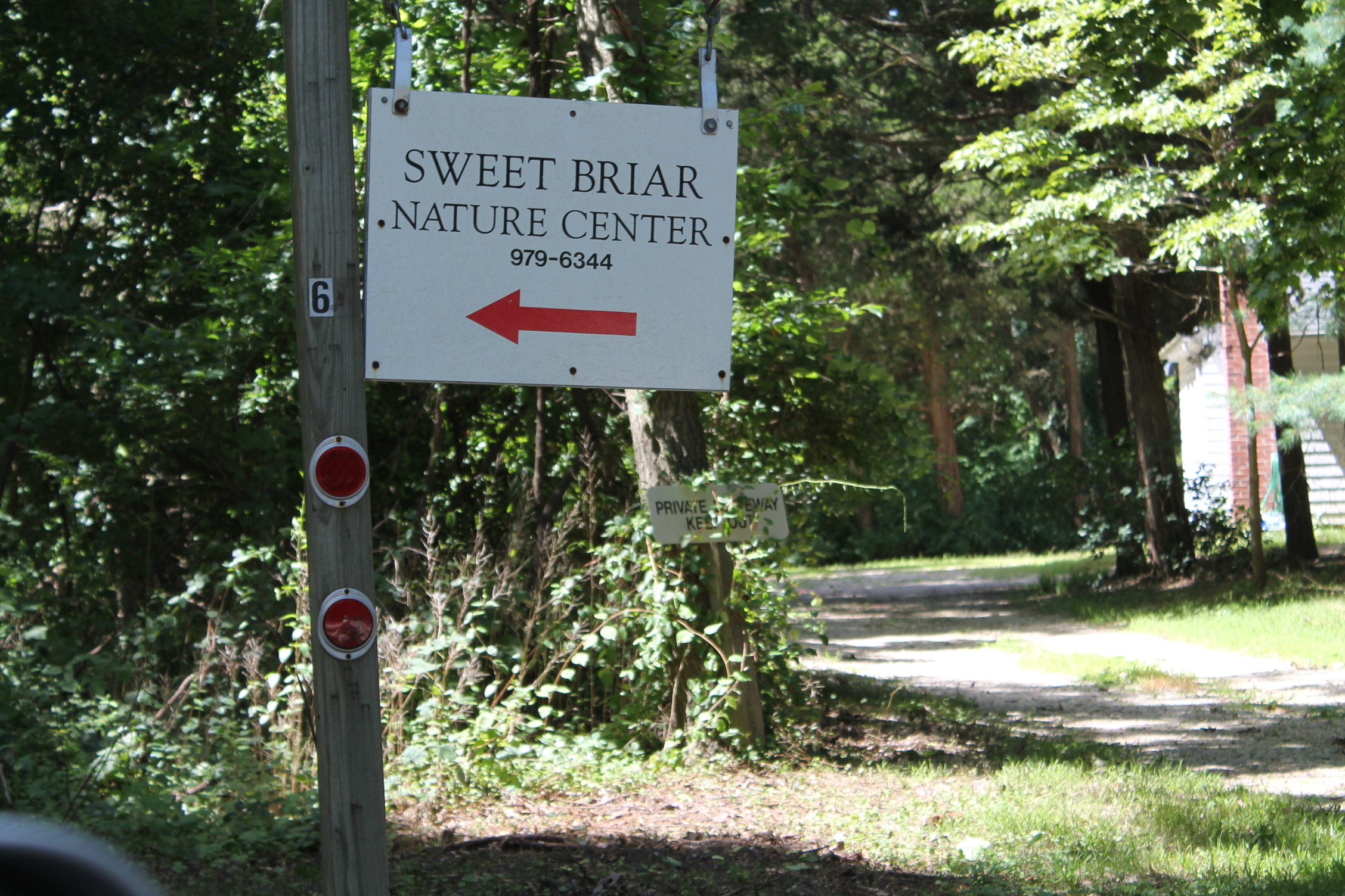 Sweet Briar Nature Center Ny