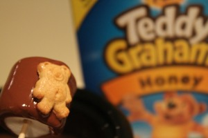 teddysmores 017