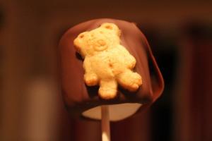teddysmores 021