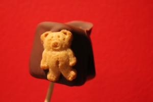 teddysmores 022