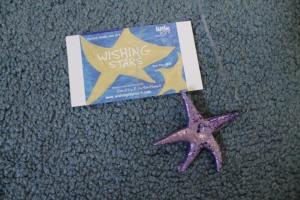 wishing stars 008
