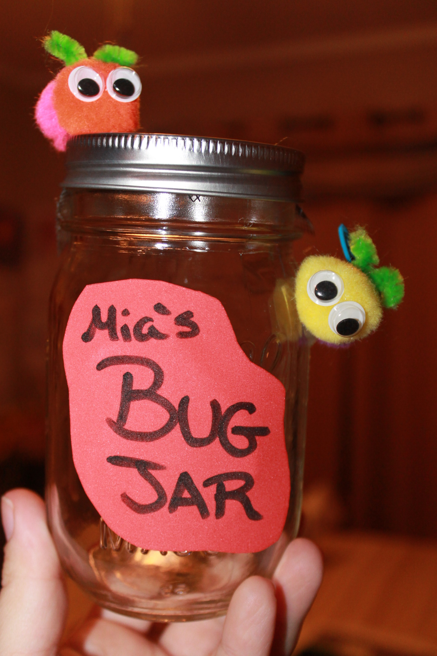 diy bug jar for kids momeefriendsli