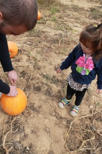 pumpkin picking 2013 034