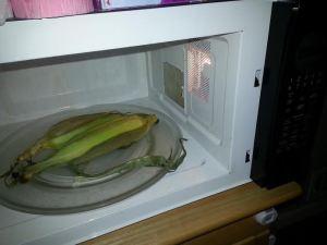 corn8
