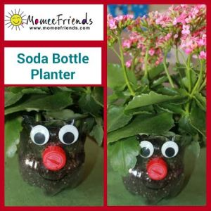 soda bottle planter
