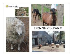 Benner's Farm