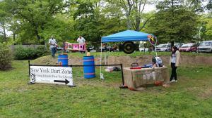 NY Dart Zone