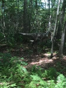 dinosaur place 4