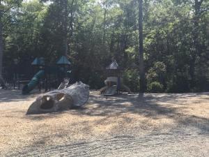 dinosaur place playground 1