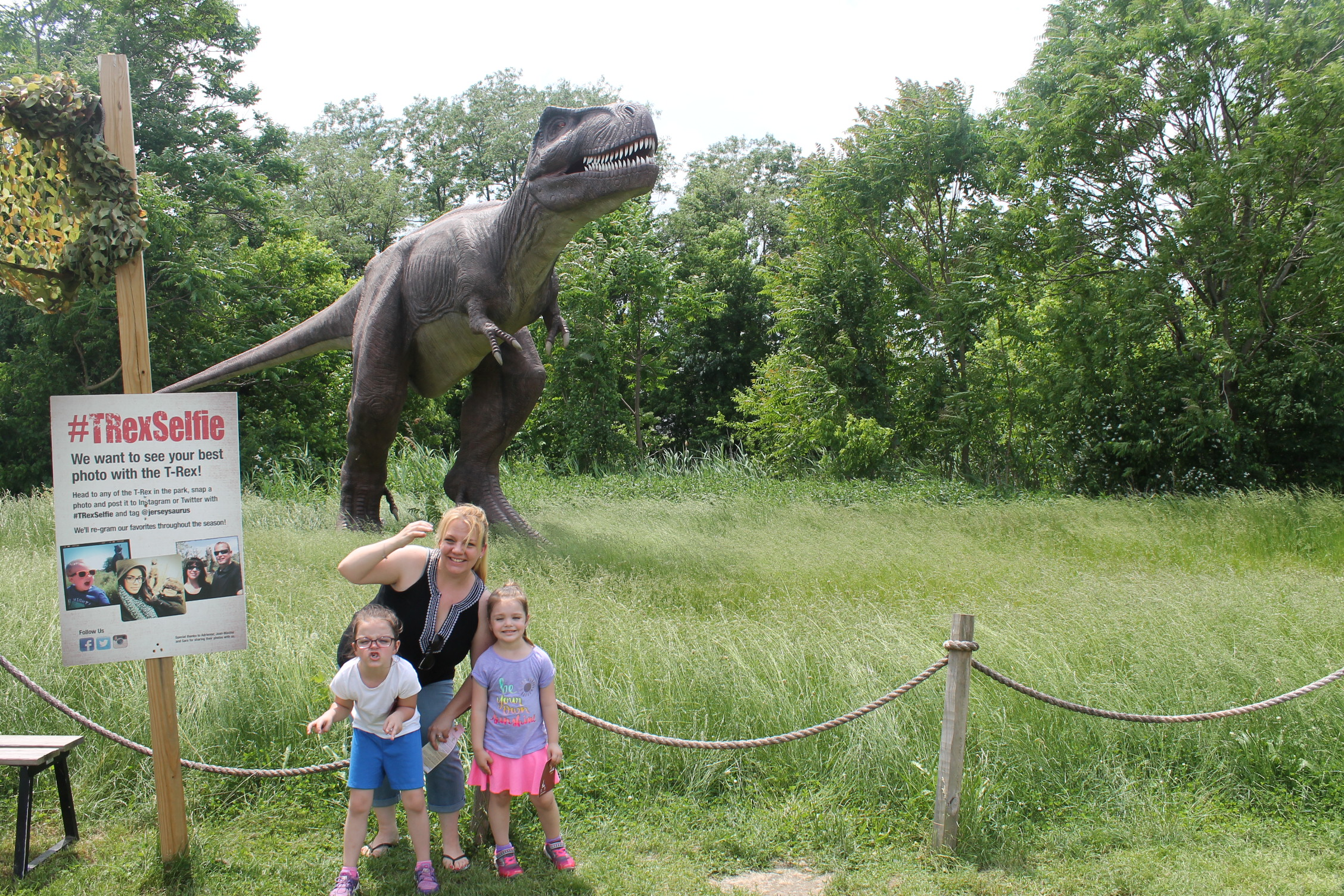 Field Station Dinosaurs : New Jersey