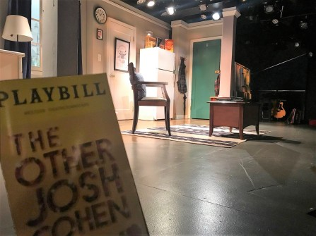 Other Josh Cohen Playbill Stage Pic (1)